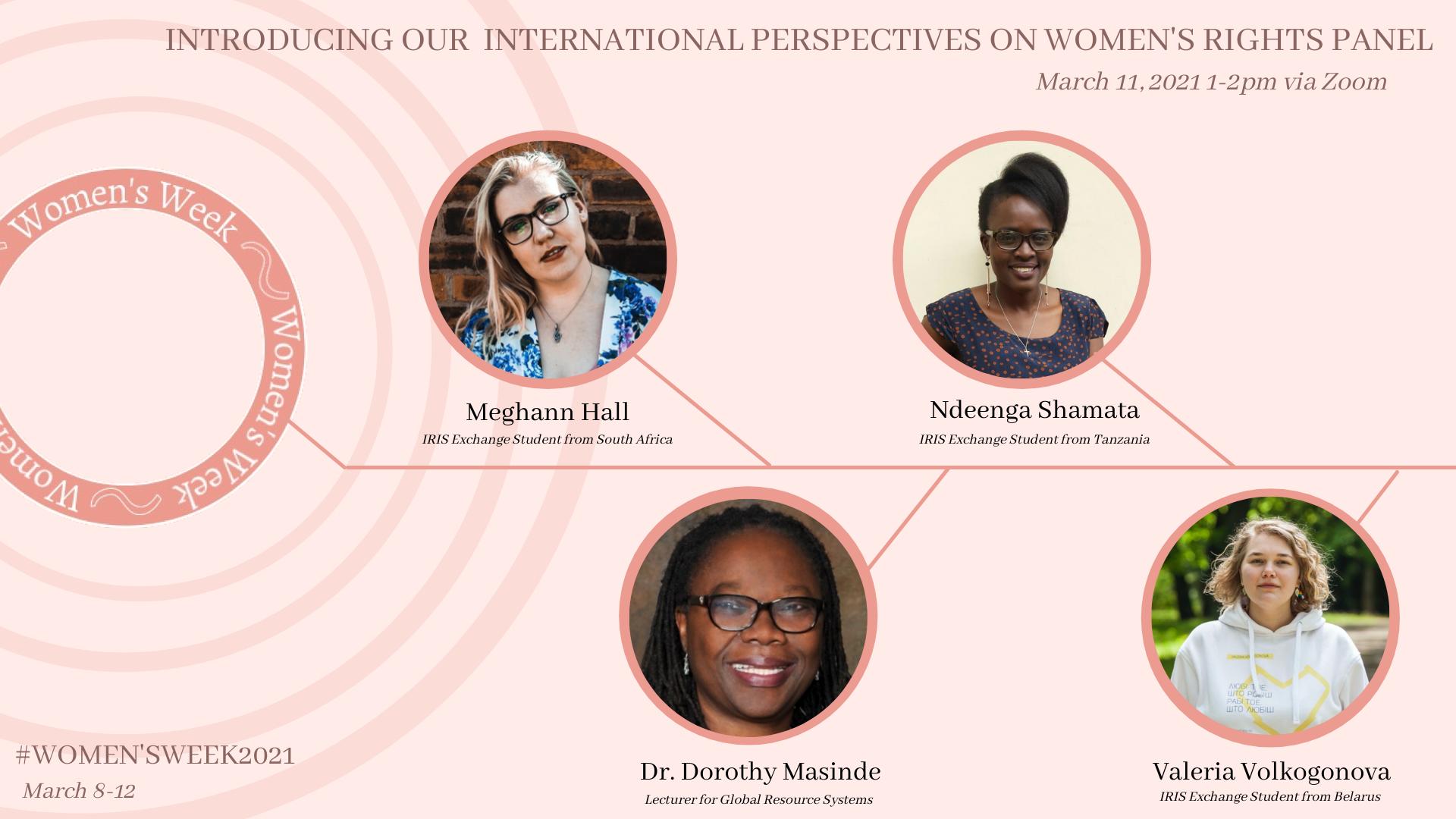 International Perspectives Panel